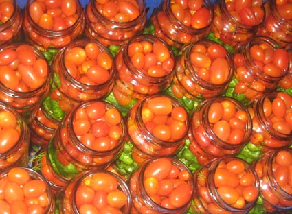 processing assorti gherkins & cherry tomatoes